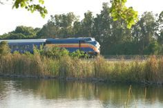 6 Incredible Florida Day Trips You Can Take By Train