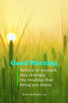 Do you know, how effective it is to send a 'Good Morning Quotes and Images' to your beloved persons? Although it looks very simple, it works very effectively. Good Morning Wishes, Good Morning Images, Good Morning Quotes, Happy Sunday Quotes, Beautiful Life, Beautiful Places, Morning Inspirational Quotes, We Energies, Reality Quotes