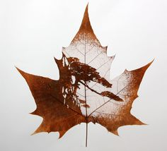 "leaf vein carving ""Scenery"" - Primitives By victor"