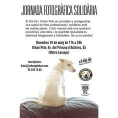 """@urbanpets's photo: """"A Urban Pets hem organitzat una jornada fotogràfica benèfica gràcies a la col•laboració de @eldiade i @sosgolden! Si voleu una foto molona amb els vostres peluts i a sobre ser solidaris, no us perdeu l'esdeveniment que hem organitzat pel pròxim 16 de maig. Trobareu més info al nostre www.facebook.com/urbanpets ;)"""""""