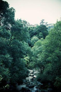 Travel photos, nature, hiking, camping...