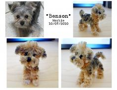 Your Pet as a Pipe Cleaner Animal  just love love these