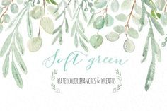 Soft green wreaths & branches by LABFcreations on @creativemarket