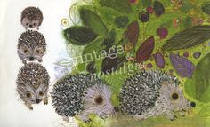 vintage hedgehog illustration - Google zoeken