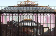 Les serres tropicales du Jardin des Plantes - Jardin des Plantes - Tropical greenhouses of the Botanical Gardens