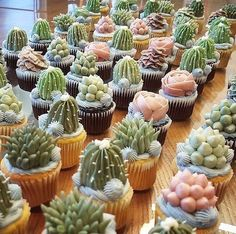 Incredibly Real-Looking Succulent Cupcakes by Brooklyn Floral Delight Bakery - KickAss Things Pretty Cakes, Cute Cakes, Beautiful Cakes, Amazing Cakes, Cupcakes Succulents, Kaktus Cupcakes, Fancy Cakes, Mini Cakes, Cactus Cake