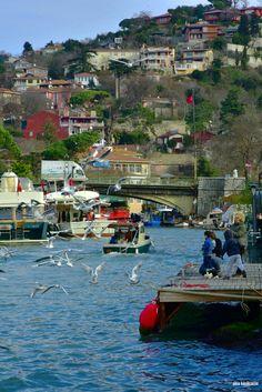 Göksu. İstanbul. Turkey. Fotograf: Emin Küçükserim