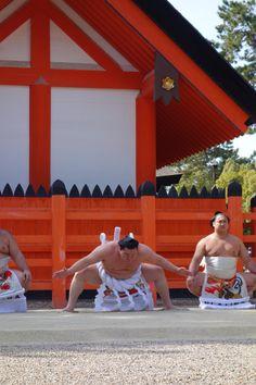 2回目となる、住吉大社での横綱奉納土俵入り。いよいよ3月8日から大阪で大相撲三月場所がはじまります。ご覧になりたい方は早めにお申し込みを。 http://lmaga.jp/blog/news/2015/03/sumiyoshitaisya-dohyoiri.html …