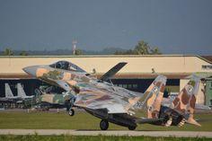 F-15 agresor: JASDF Instructor de vuelo