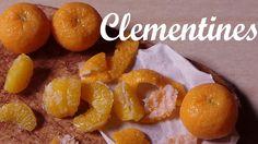 Etsy shop; https://www.etsy.com/dk-en/shop/SugarCharmShop?ref=si_shop instagram; @SugarCharmShop Hey guys! Clementine, Satsuma, Mandarin, orange, lemon, lime...