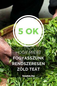 A zöld tea fogyasztásának számos pozitív hatása van, most összegyűjtöttük az 5 legfontosabbat! Tea Blog, Nu Skin, Herbs, Herb, Medicinal Plants
