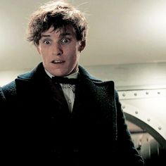 """Fantastic Beasts and Where to Find Them → The Niffler's defiance """"The Niffler stares at Newt defiantly as it forces another gold bar into its already overflowing pouch. """""""