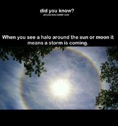 Did you know halo around moon or sun means storm is coming?