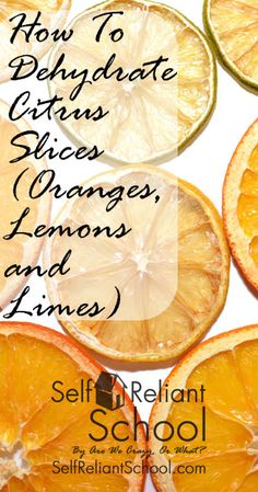 Step-by-step directions for dehydrating citrus slices. I also compare the Excalibur dehydrator to the Nesco/American Harvest. Dried Oranges, Dried Fruit, Excalibur Dehydrator, Dried Lemon, Dehydrator Recipes, Dehydrated Food, Meals In A Jar, Canning Recipes, Canning Tips