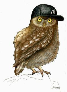 Pinzellades al món: Ocells amb barrets / Pájaros con sombreros / Birds in hats