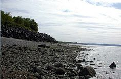 Discovery Park - Parks and Gardens - Virtual Tour - Visiting Seattle - Seattle.gov