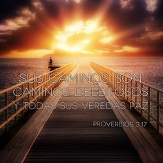 Sus caminos son caminos deleitosos, Y todas sus veredas paz. (Proverbios 3:17) #Biblia