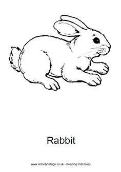 Rabbit Colouring Page 4 Easter Coloring Pages For Kids Animal