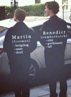 Martin Freeman. John Watson. Benedict Cumberbatch. Sherlock Holmes. Hedgehog. Otter.