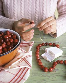 """""""The best material for stringing cranberry or popcorn garlands is inside your medicine cabinet. Waxed floss is strong and slick, so cranberries and popcorn will slide on easily. Knot one end of a piece of floss, and thread a needle onto the other; just pierce through items, and slip them on."""" ~Martha Stewart"""
