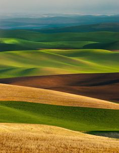 The Palouse region is a beautiful area full of rolling hills that have a rich farmland history. The hills are asymmetrical and offer some of the most beautiful, peaceful, lush green landscape available. Beautiful World, Beautiful Places, Beautiful Pictures, Mother Earth, Mother Nature, Natur Wallpaper, Landscape Photography, Nature Photography, Outdoor Photography