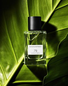 Perfume on green leaf - Foto - Prince Photography, Jewelry Photography, Photography Backdrops, Still Life Photography, Beauty Photography, Creative Photography, Product Photography, Cosmetic Photography, Photography Composition