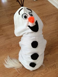Easy Olaf costume for your dog. All you need is a kids white sweatshirt, black & white felt and brown & orange pipe cleaners.