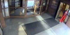 Zloděje elektrokola zachytila kamera. Nepoznáte ho? >>> https://plzen.cz/tag/krimi-plzen/    #KRIMI #ZPRÁVY #PLZEŇ