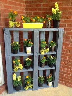 Pallet Idea for displaying your blooming plants
