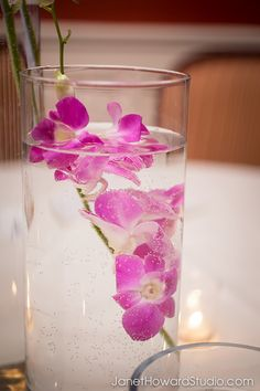 Orchids in water reception centerpiece. By Stylish Stems
