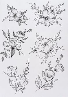 Flower Line Drawings, Botanical Line Drawing, Floral Drawing, Botanical Drawings, Subtle Tattoos, Small Tattoos, Flower Tattoo Designs, Flower Tattoos, Tattoo Drawings
