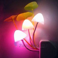 EU US Plug for choose Romantic Colorful LED Mushroom Night Light Bed Lamp Home Illumination Light sensor automatic startup Unique Night Lights, Led Night Light, Romantic Lights, Mushroom Lights, Club Lighting, Modern Sconces, Light In, Lumiere Led, Nightlights
