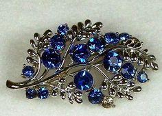 Google Image Result for http://cdn100.iofferphoto.com/img/item/113/018/54/brooch-vintage-jewelry-beautiful-43d99.jpg