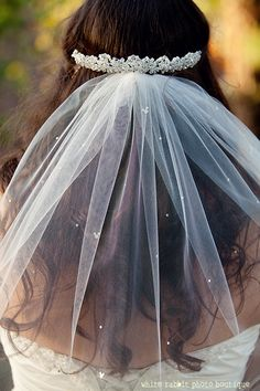 OMG love love love the hidden mickey detail in the veil!!  Could do this with really small rhinestones.