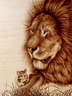 The fable of the Lion and the Mouse, Pyrography/ Woodburning by Cara Jordan