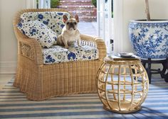 The Lily Armchair and Drum Table with friend #Soane #Lily #Rattan