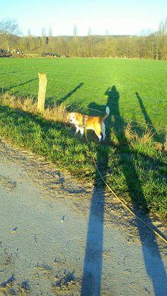Mein Beagle und ich beim Morgendlicher Gassi runde..