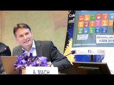 Laurent Matile ,Oser le paradigme des ODD, ONU 14 juin 2019,Genève Laurent, Sustainable Development