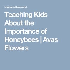 Teaching Kids About the Importance of Honeybees   Avas Flowers
