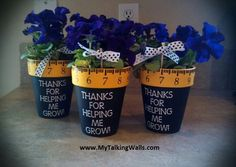 Teacher Gifts...I've done something similar before, but like the touch of the tape measure around the top of the pot.