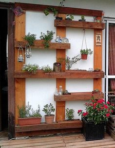 We know that there are people who love to decorate their home with natural items like the flowers and plants, so we have added this amazing wood pallet planter idea which is as large as the wall and it covers the whole wall to make the area look attractive with the colored flowers placed on the planter.