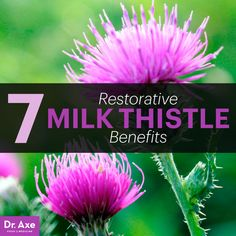 Milk thistle benefits can also reduce your risk for some of the most common and serious disorders that develop in adults as they age, including heart disease, cancer, diabetes, kidney and liver damage, aged skin, and vision-related problems.