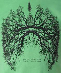 """Se Mostre Verde! """"Você esta respirando? Agradeça as árvores"""". Você já parou para pensar nessa frase? As árvores produzem oxigênio e refrescam o clima. Mais que tudo, as árvores são sinônimo de qualidade de vida. Não apoie o desmatamento!"""
