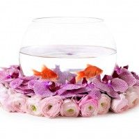 Have you ever seen centerpieces like these??  Goldfish bowls with flowers around the base!