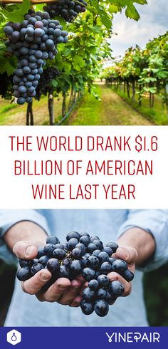The World Drank $1.6 Billion Of American Wine Last Year