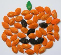 Pumpkin Seed Jack O' Lantern Mosaic
