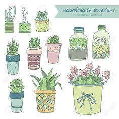 Risultati immagini per piante grasse disegni