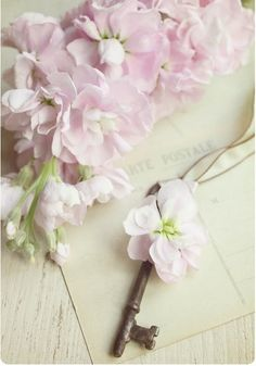 delicate little pink flowers Pretty Pastel, Beautiful Flowers, Shabby Chic, Rosa Pink, Old Keys, Pink Blossom, Key To My Heart, Flower Fashion, Love Photography
