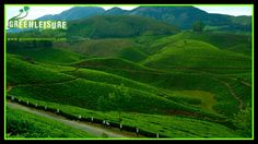 #TeaGardens - #Speciality of #Kerala #HillStations   View from #DevikulamHills in #Munnar   http://www.greenleisuretours.com/Munnar-Honeymoon-Packages.php  Reach us GreenLeisure Tours & Holidays for any #Kerala #Tour #Packages   www.greenleisuretours.com  info@greenleisuretours.com l +91 9446 111 707  Like us & Reach us https://www.facebook.com/GreenLeisureTours for more updates on #Kerala #Tourism #Leisure #Destinations #SiteSeeing #Travel #Honeymoon #Packages #Weekend #Adventure #Hideout