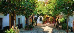 Travel guide to Santa Cruze Seville Spain